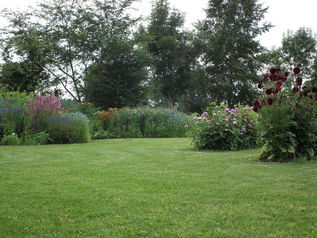 tuin midden augustus